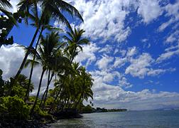 Scenery photo of Maui #1