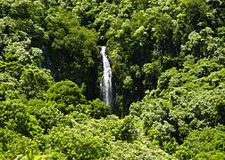 Scenery photo of Maui #2