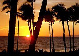 Scenery photo of Maui #3