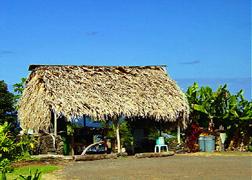 Scenery photo of Maui #6